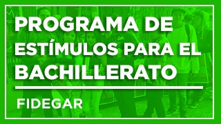 REGLAS DE OPERACIÓN 2018-2019